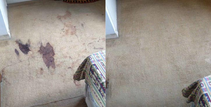 carpet clean before and after