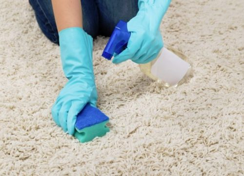 Carpet and rug cleaning and care