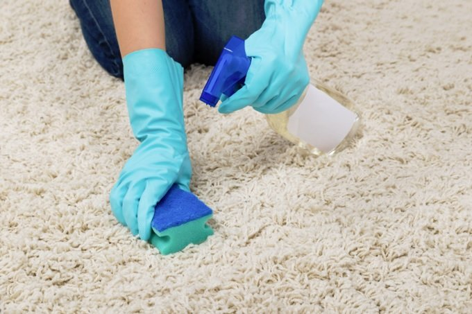 Cleaning the carpet