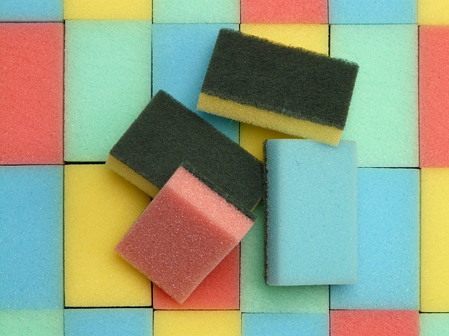 sponge-52113_640